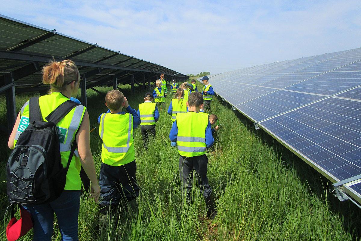 Yardwall Solar Farm | Belltown Power