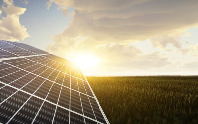 Belltown Power Texas Announces Start of Construction on a 330MWdc Texas Solar Portfolio